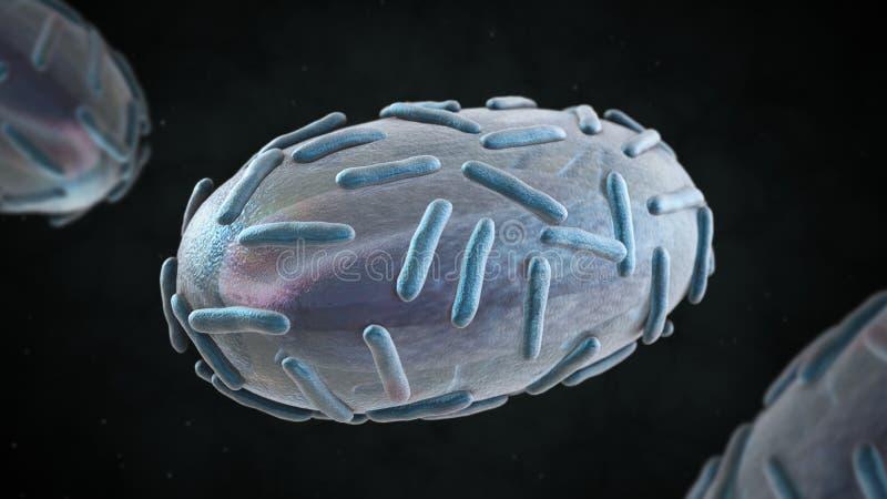 3D天花病毒的例证 皇族释放例证