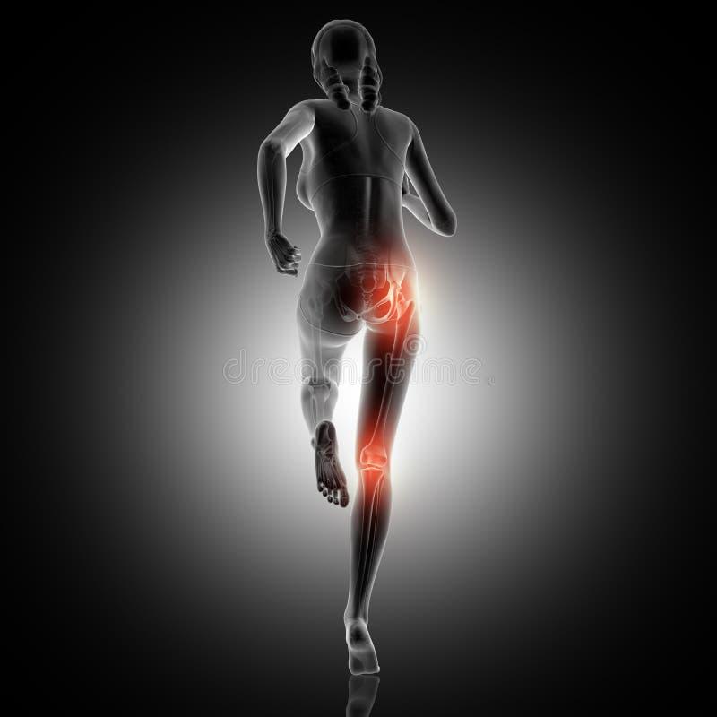 3D女性赛跑的背面图与膝盖和上弦与斜端杆结点highlig的 皇族释放例证