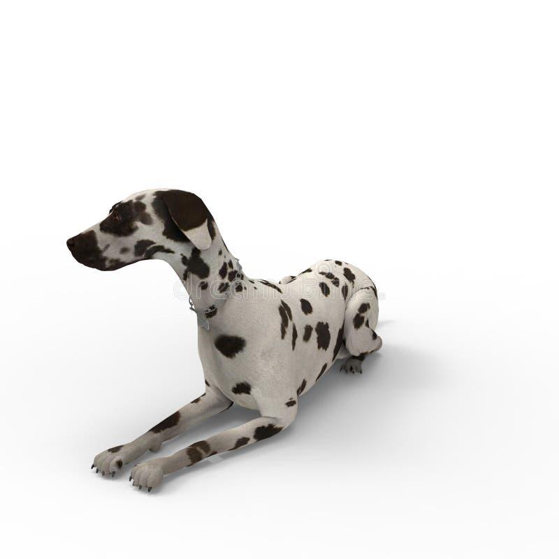 3d狗翻译被创造通过使用搅拌器工具 库存例证