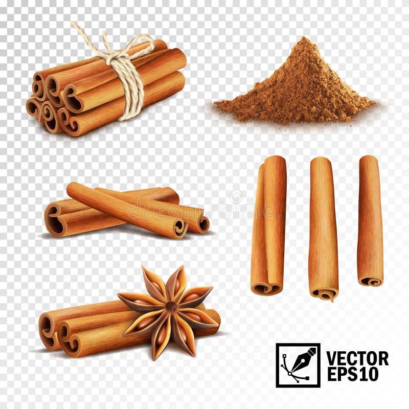 3d现实传染媒介套桂香肉桂条栓与绳索、茴香星和堆桂香 皇族释放例证