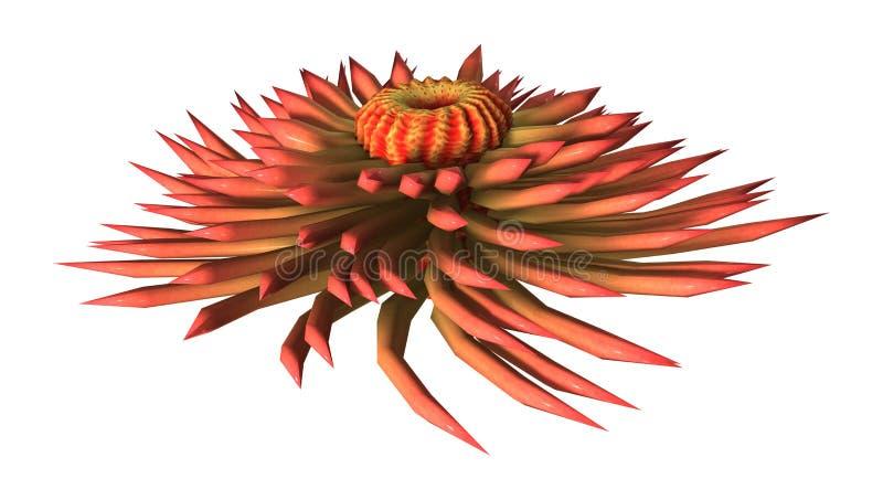 3D翻译在白色的海葵 免版税库存照片