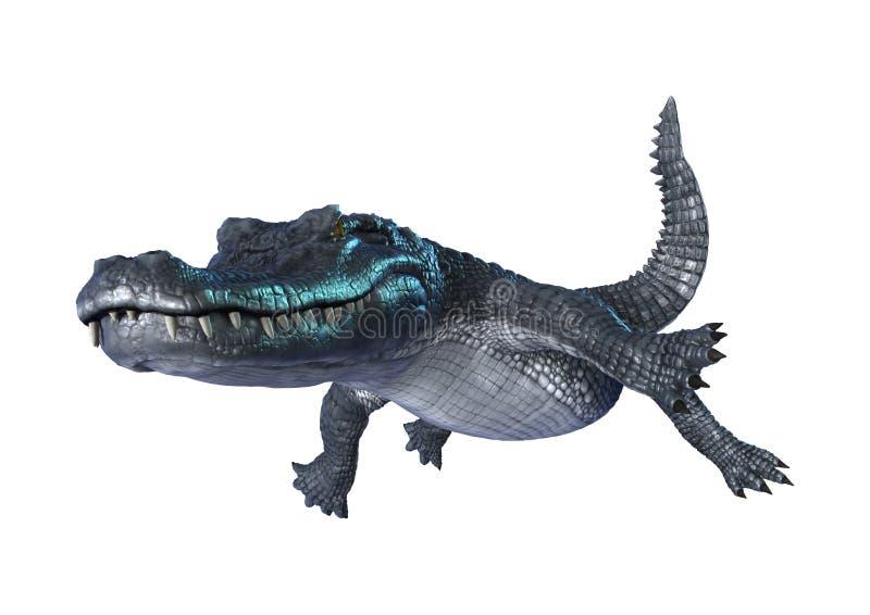 3D翻译在白色的鳄鱼凯门鳄 皇族释放例证