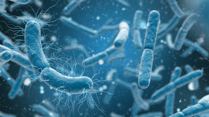 3D翻译细菌特写镜头在蓝色背景中 皇族释放例证