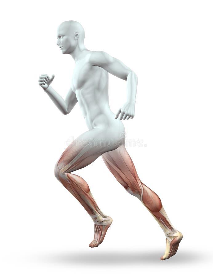 3D跑与骨骼的男性图 向量例证