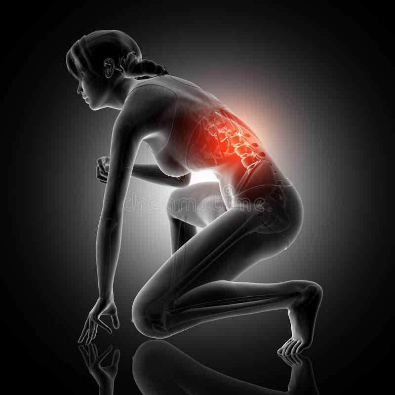 3D蹲下与脊椎的妇女形象被突出 向量例证