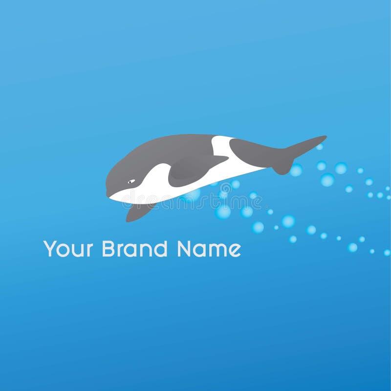 A d'épaulard d'orque en mer image libre de droits