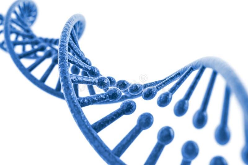 3d übertragen von DNA-Struktur lizenzfreie abbildung