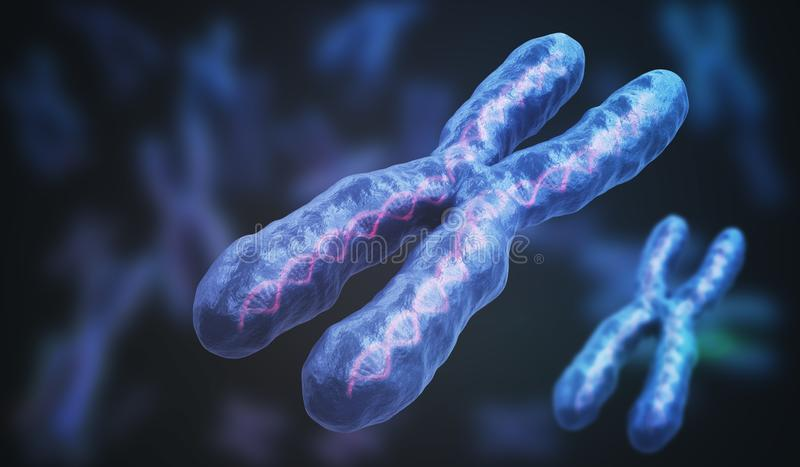 3D übertrug Illustration von Chromosomen Genetikkonzept vektor abbildung
