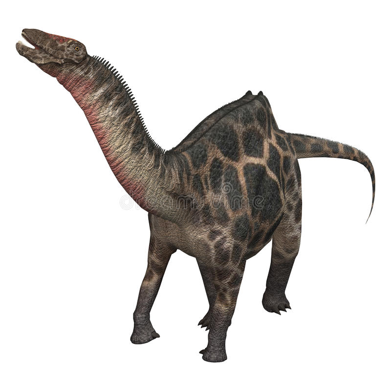 3d ścinku dicraeosaurus dinosaur nad ścieżki renderingu cienia biel ilustracji