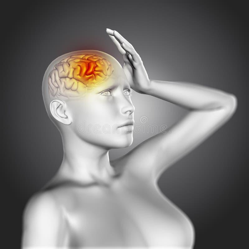 3D żeńska postać z mózg podkreślającym ilustracja wektor