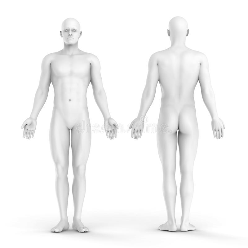 3d белый человек - фронт и задний взгляд стоковое фото