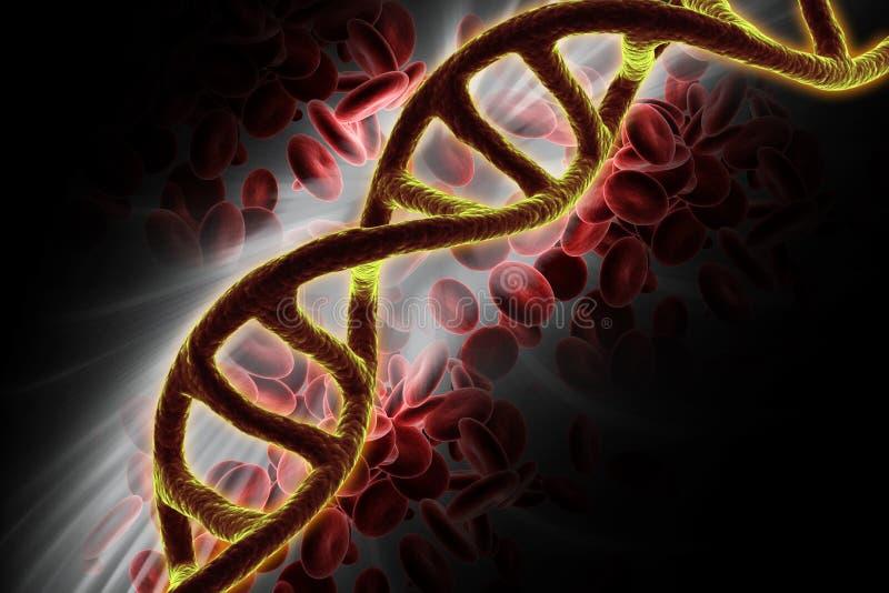 3d представило ДНК изолировало на предпосылке цвета стоковые фотографии rf