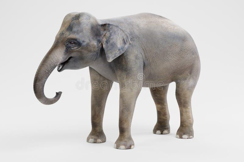 3D представляют азиатского слона - женщины бесплатная иллюстрация