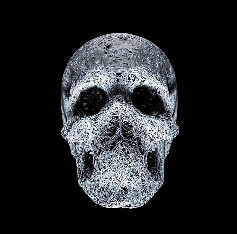 Рисунок 3D-линии Иллюстрация черепа Полигональная сеть тонких линий на черном фоне иллюстрация вектора