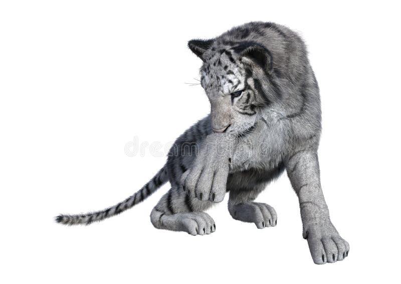 3D представляя белого тигра на белизне стоковые фото