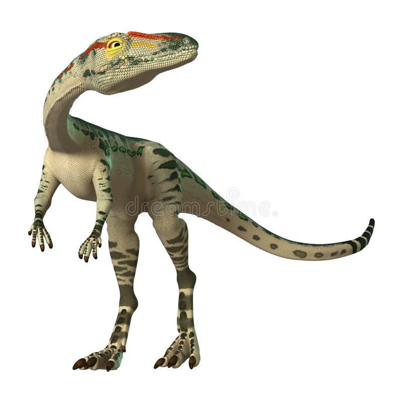 3D翻译在白色的恐龙腔骨龙属 向量例证