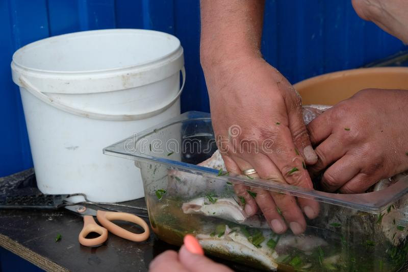 D'abord les poissons devraient imbiber la marinade images libres de droits