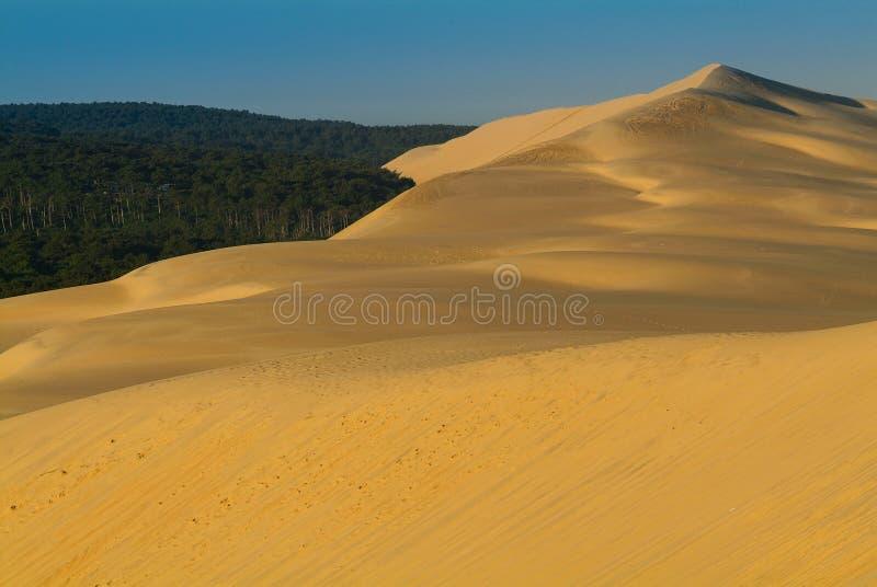 D'Arcachon de Dune du Pilat-Bassin imagenes de archivo
