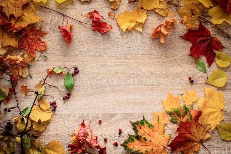D'automne de carte postale toujours la vie sur un dessus de table lumineux image stock