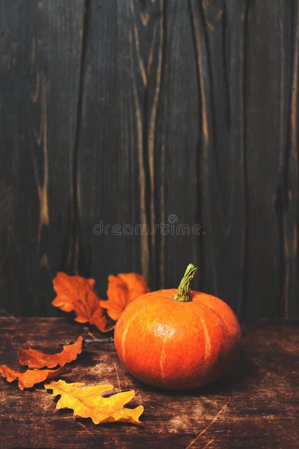 D'automne toujours carte rustique de la vie avec des potirons et des feuilles sur le vintag photo stock