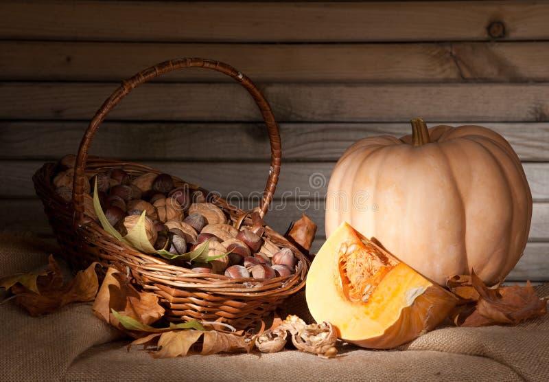 D'automne toujours durée photographie stock libre de droits