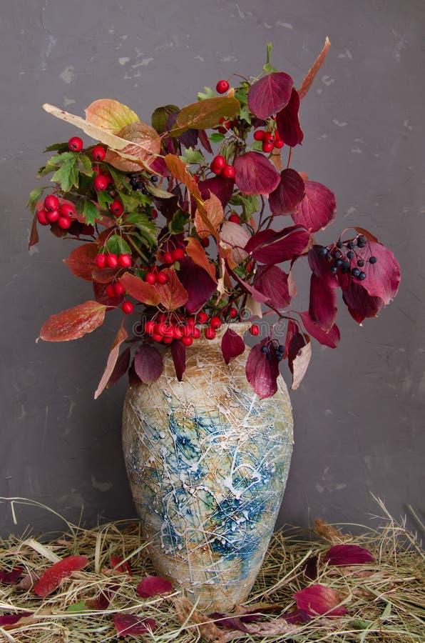D'automne toujours durée Baies rouges d'aubépine et de feuilles d'arbuste décoratif photographie stock