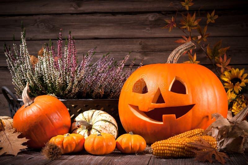 D'automne toujours la vie avec des potirons de Halloween image libre de droits