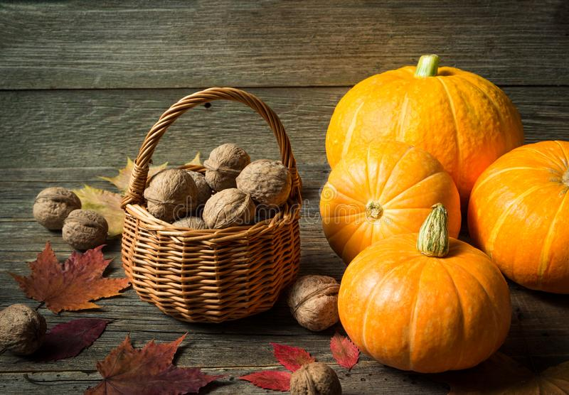 D'automne toujours la vie avec des potirons et des écrous image libre de droits