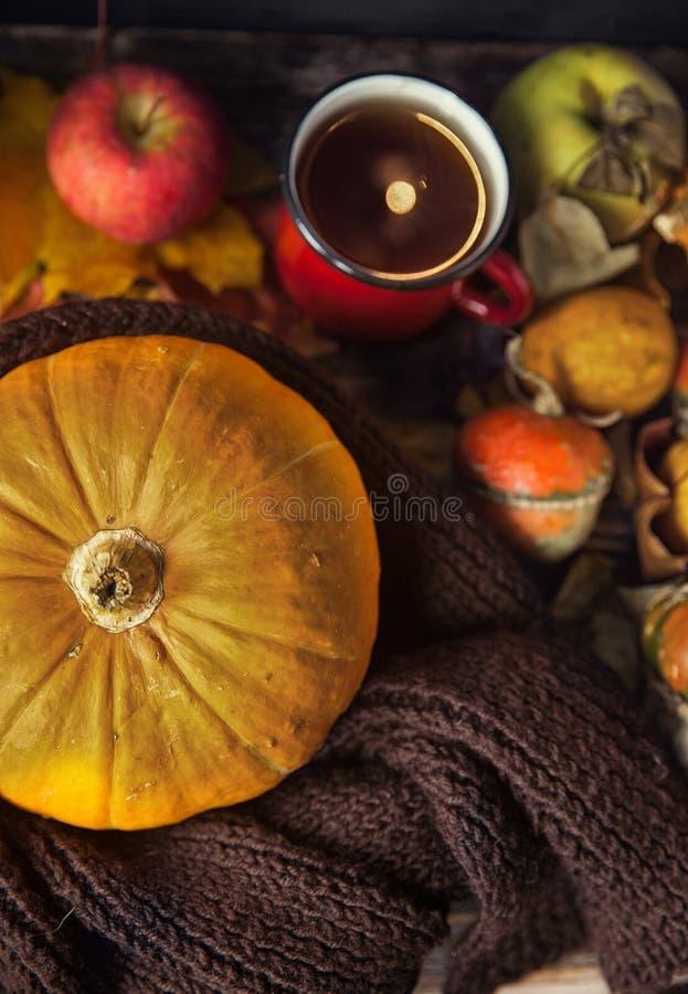 D'automne toujours la vie avec les potirons et la tasse de thé sur le vieux CCB en bois photo libre de droits