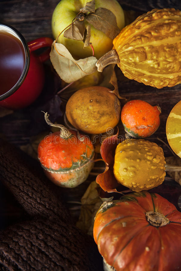 D'automne toujours la vie avec les potirons et la tasse de thé sur le vieux CCB en bois image libre de droits
