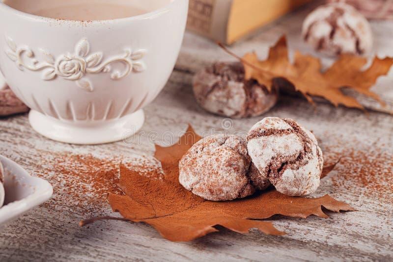 D'automne toujours la vie avec la tasse de biscuits de cacao et de chocolat photos libres de droits