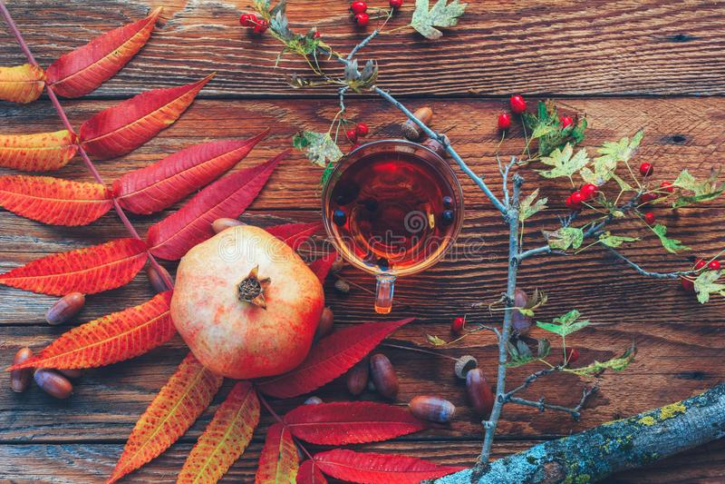 D'automne toujours la vie des feuilles colorées, d'une tasse de thé, de la grenade, des glands et d'une branche avec les baies ro photos libres de droits