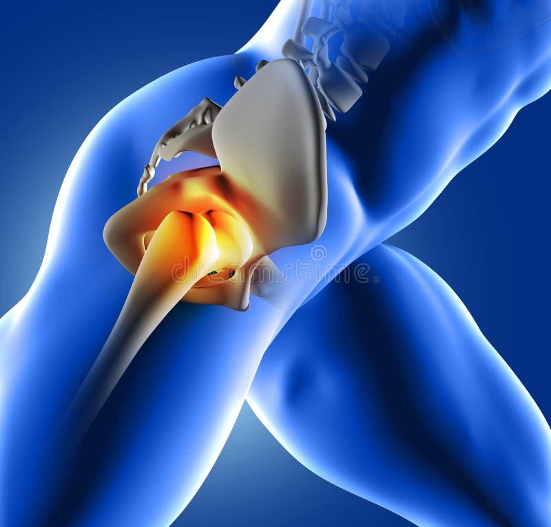 3D blue medical image of hip joint royalty free illustration