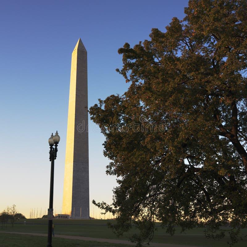 d c pomnik Waszyngtona usa obraz royalty free