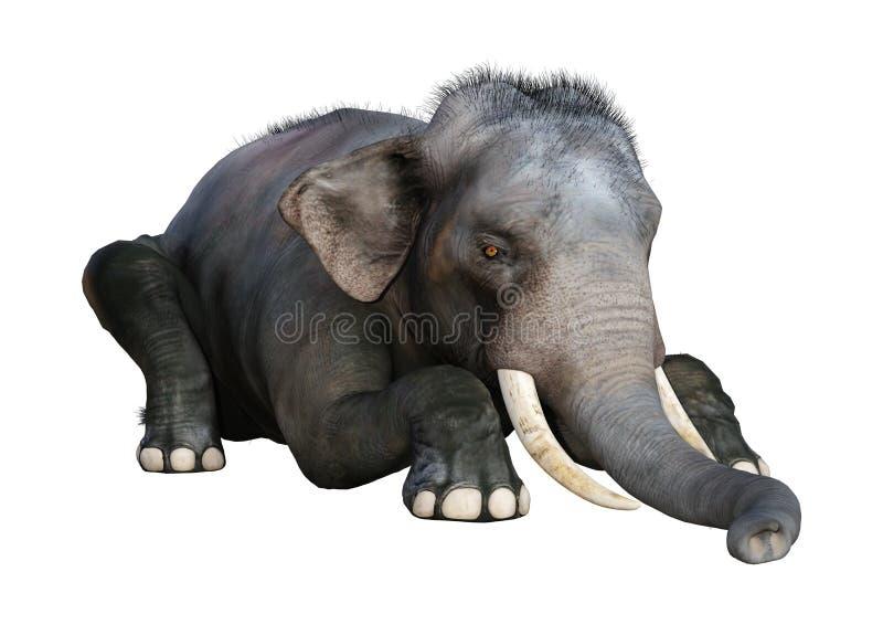 3D che rende elefante indiano su bianco royalty illustrazione gratis