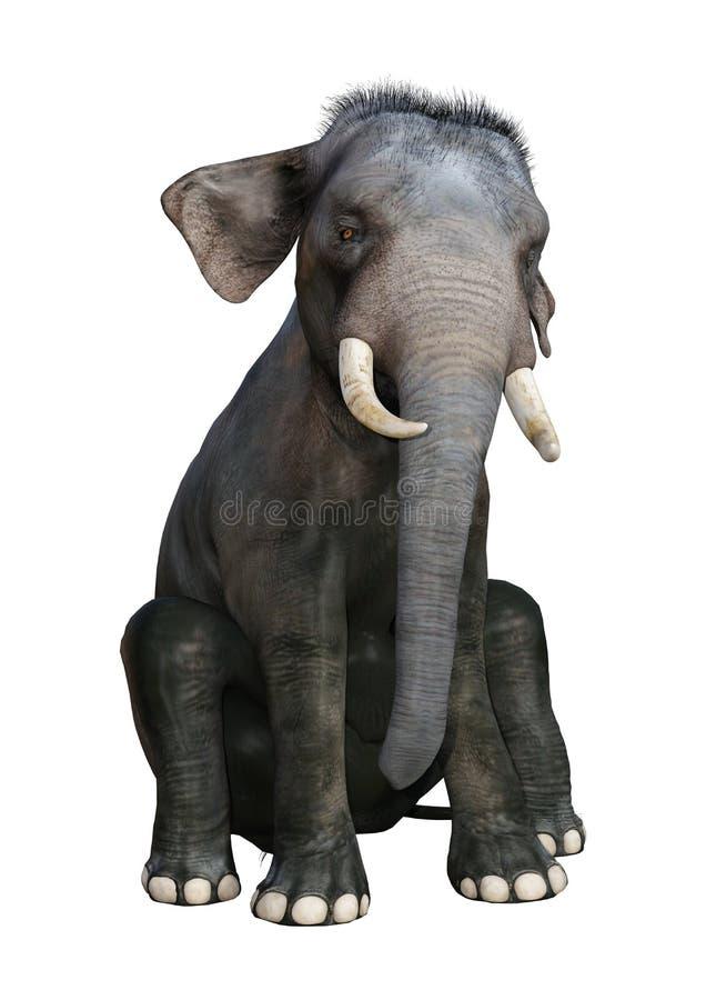 3D che rende elefante indiano su bianco illustrazione di stock