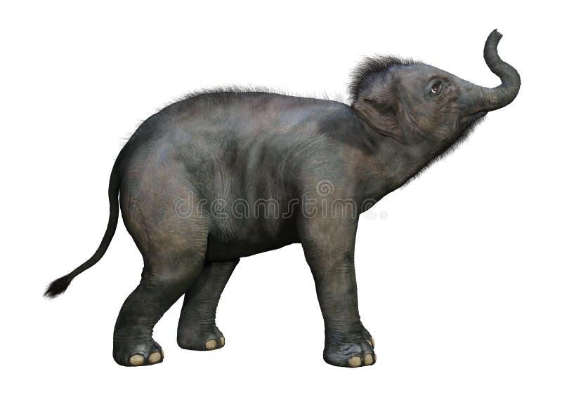 3D che rende il bambino dell'elefante indiano su bianco royalty illustrazione gratis