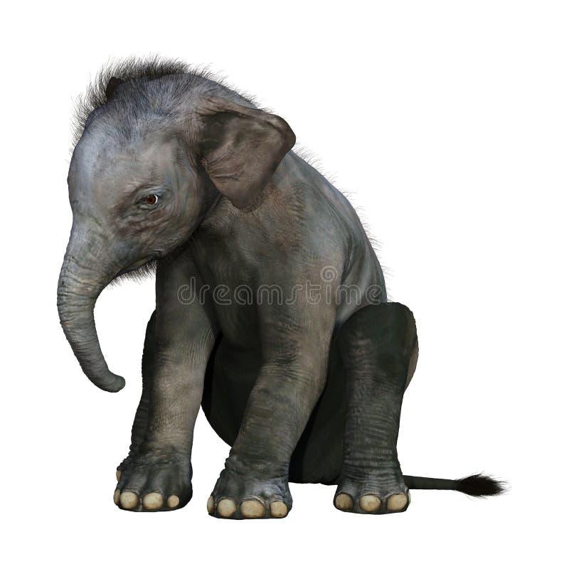 3D che rende il bambino dell'elefante indiano su bianco illustrazione di stock