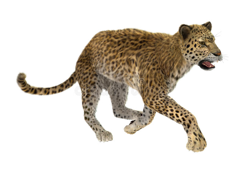 3D, das große Cat Leopard überträgt vektor abbildung