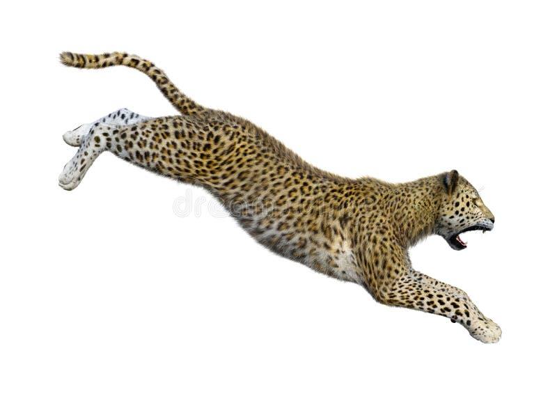 3D, das große Cat Leopard auf Weiß überträgt lizenzfreie stockfotografie