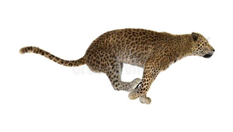 3D, das große Cat Leopard auf Weiß überträgt stockbilder