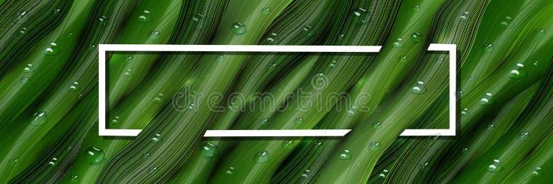 3d, descensos tridimensionales del agua y hojas tridimensionales, verdes en el estilo del realismo bandera tropical realista, web stock de ilustración