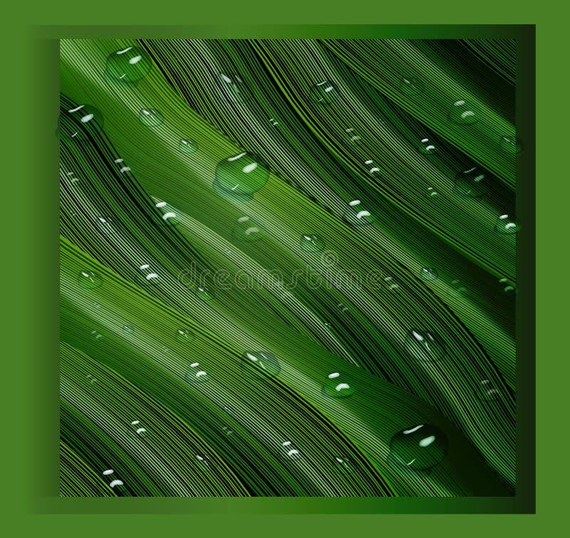 3d, descensos tridimensionales del agua y hojas tridimensionales, verdes en el estilo del realismo un fondo realista, tres libre illustration
