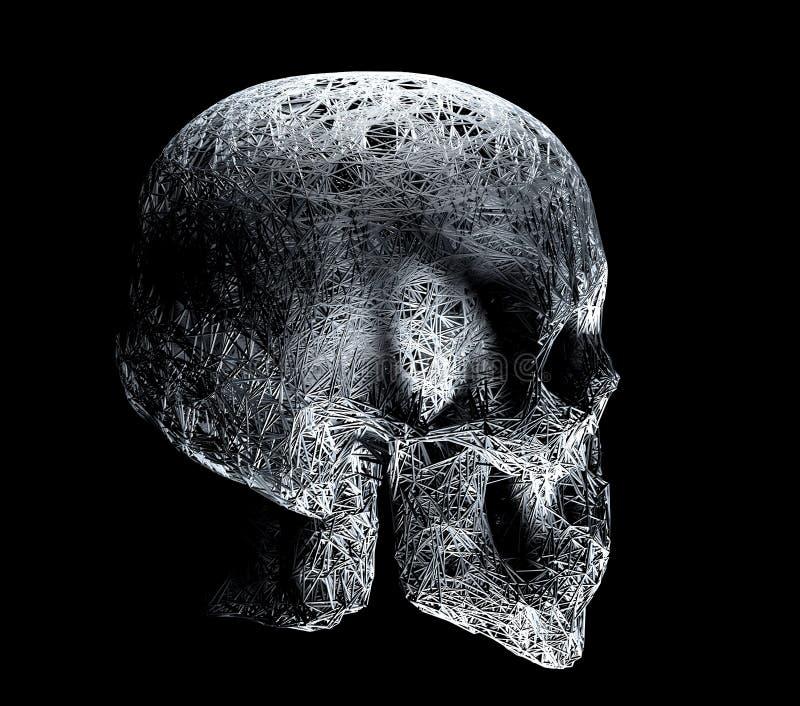 3D drutu ramy plexus ludzka czaszka, profilowy widok, czarny i biały ilustracja 3 d ilustracji
