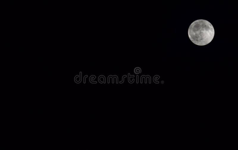 3D erläuterter Mond lizenzfreie stockfotos