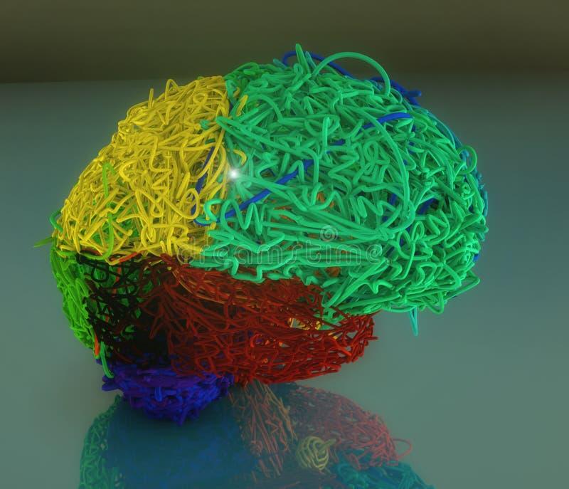 3d färbte Gehirnillustration stockbilder
