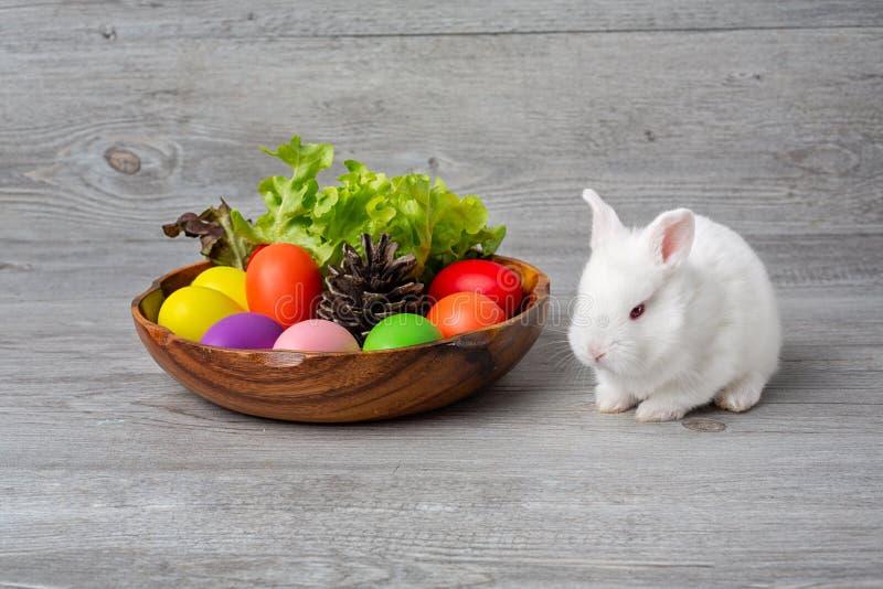 D?a feliz de Pascua Conejito con los huevos de una cesta y los conos del pino Conejo con los huevos de Pascua coloridos en una ba foto de archivo libre de regalías