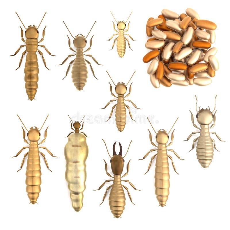 3d framför av termituppsättning royaltyfri illustrationer