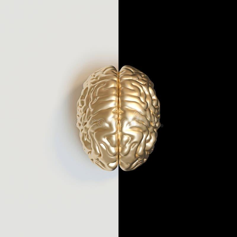 3d geef beeld van gouden-gekleurde menselijke hersenen op wit terug en zwart vector illustratie