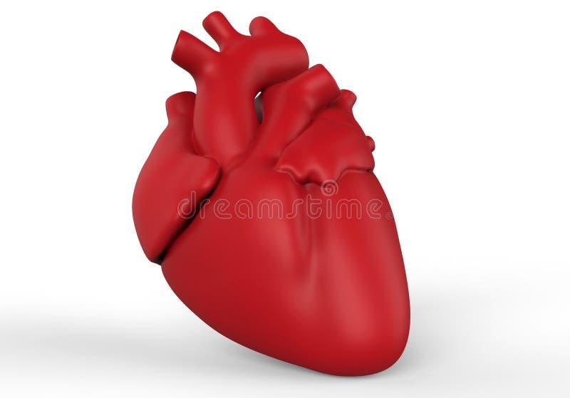3D geef menselijk hart terug royalty-vrije illustratie